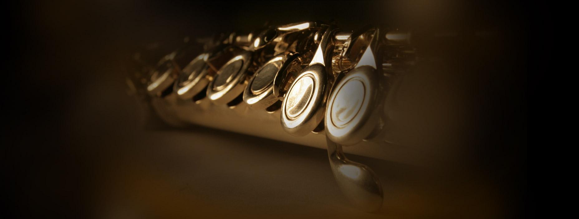 Serviços da Empresa de Eventos Musicais Para Casamentos, Orquestra e Coral, Corporativo
